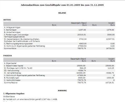 Grüner Halbmond Bilanz 2009 160727